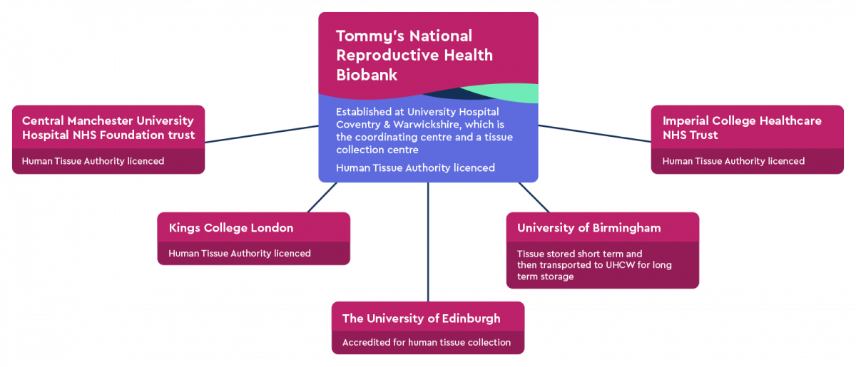 Tommy's National Biobank structure